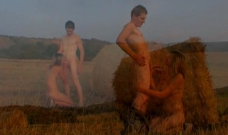 Wide field and hayloft are used for a wild legal age teenager sex by teenies