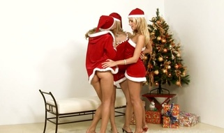 Ardent & slutty lesbo chicks caress each other well